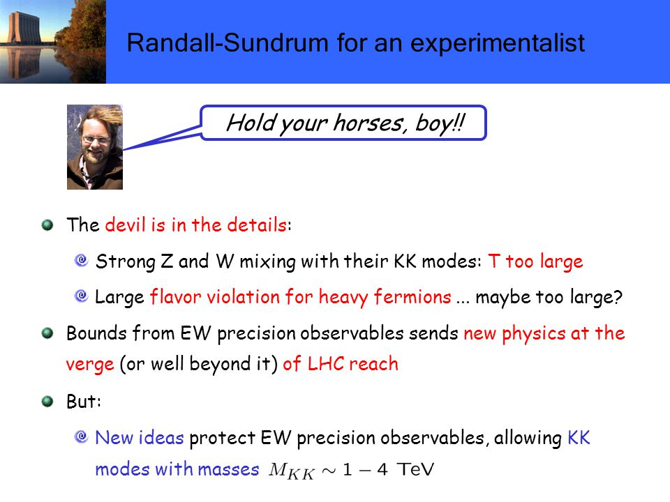 Randall-Sundrum for an experimentalist The devil is in the details: Strong Z and W mixing with their KK modes: T too large Large flavor violation for heavy fermions...