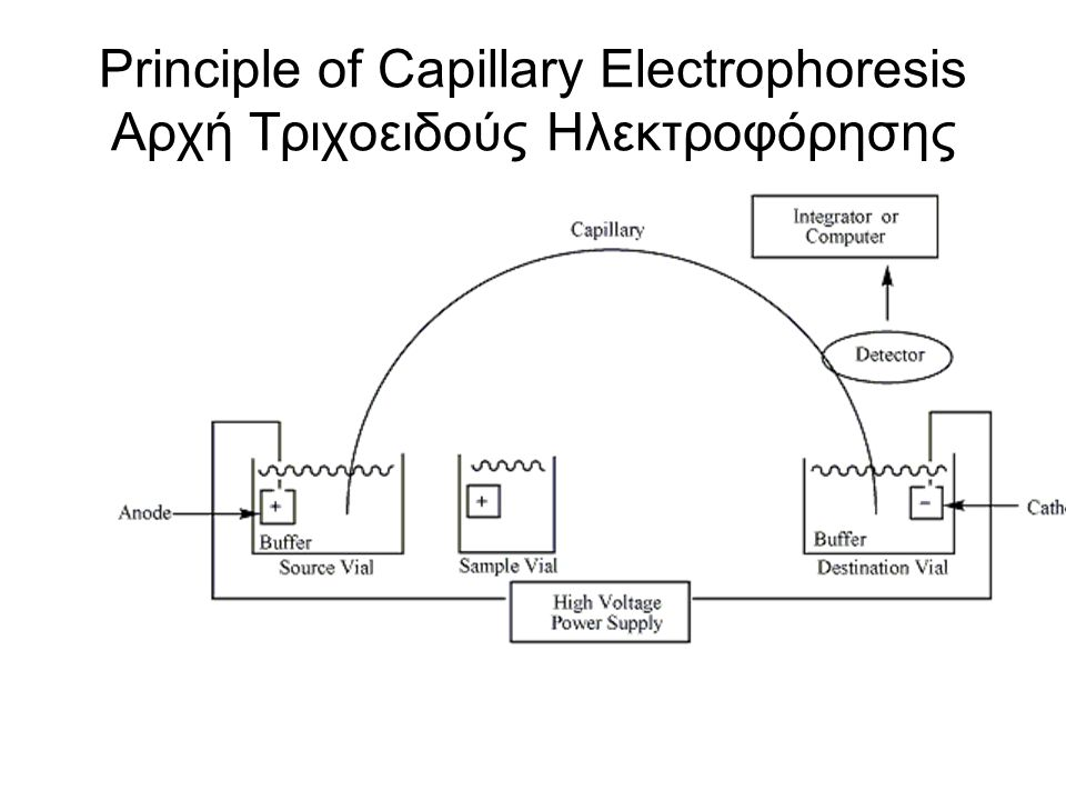 Principle of Capillary Electrophoresis Αρχή Τριχοειδούς Ηλεκτροφόρησης