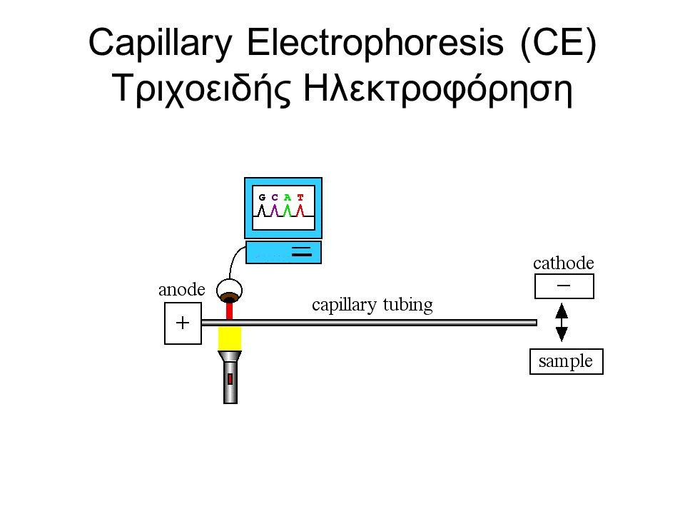 Capillary Electrophoresis (CE) Τριχοειδής Ηλεκτροφόρηση