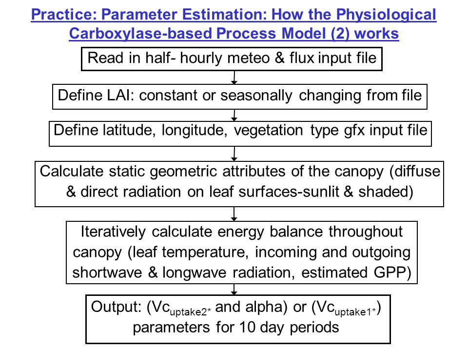 Practice: Parameter Estimation: How the Physiological Carboxylase-based Process Model (2) works Define LAI: constant or seasonally changing from file
