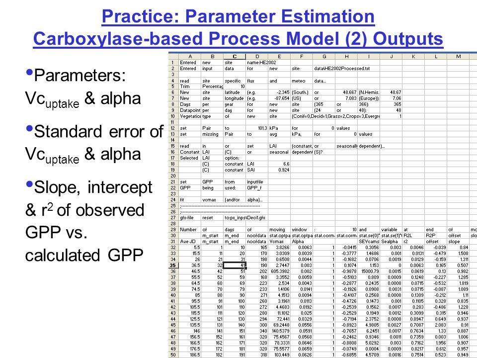 Practice: Parameter Estimation Carboxylase-based Process Model (2) Outputs Parameters: Vc uptake & alpha Standard error of Vc uptake & alpha Slope, intercept & r 2 of observed GPP vs.
