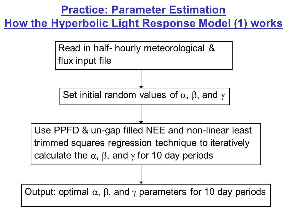 Practice: Parameter Estimation Hyperbolic Light Response Model (1) Outputs Parameters:  Standard error of  and  Slope, intercept & r 2 of observed NEE vs.
