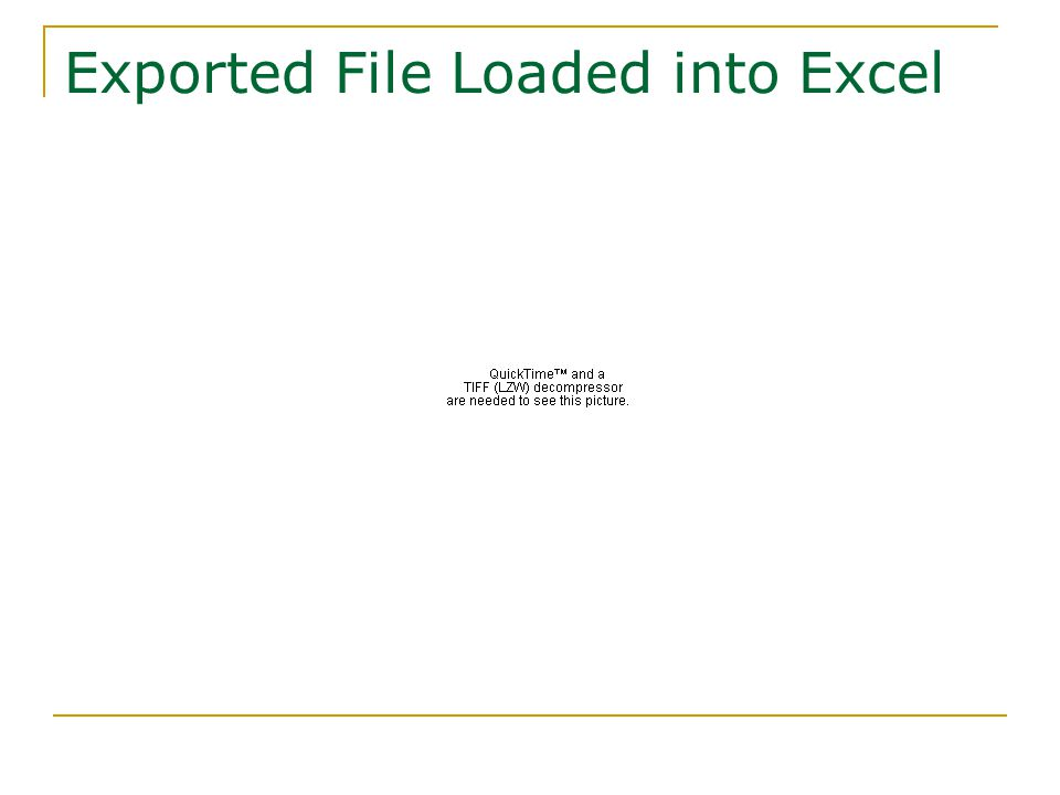 Exported File Loaded into Excel
