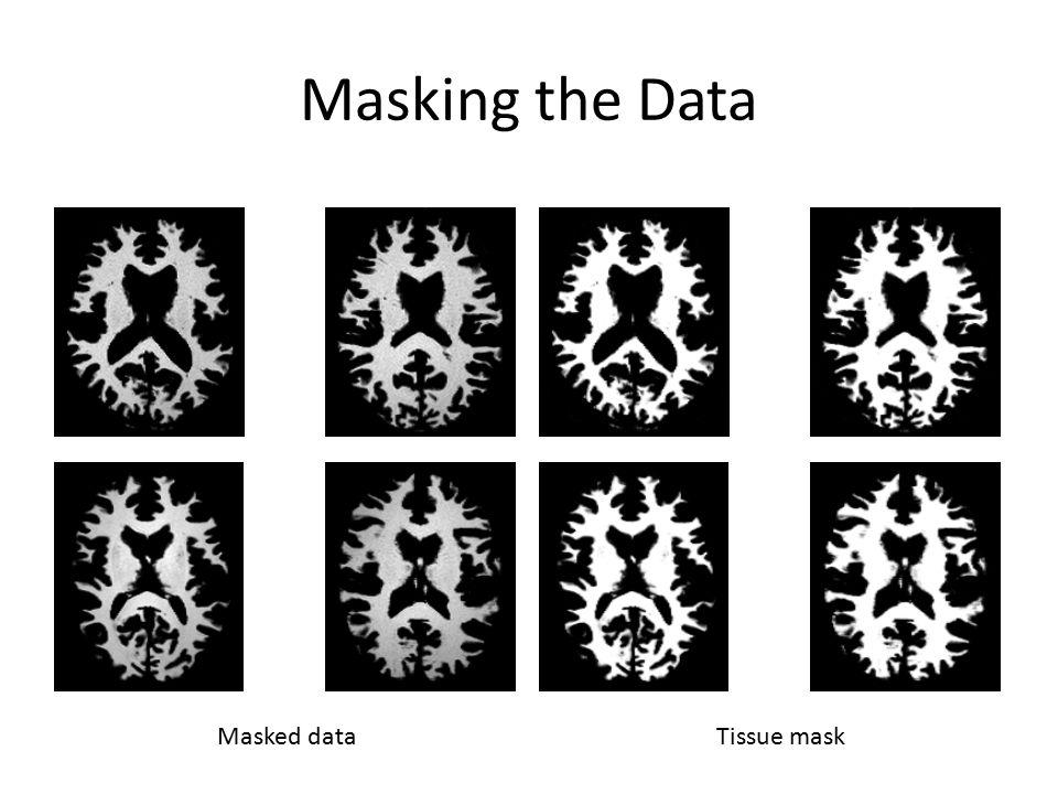 Masking the Data Masked dataTissue mask