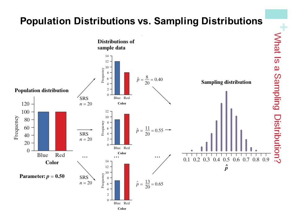 + Population Distributions vs.