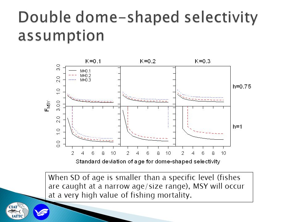 When SD of age is smaller than a specific level (fishes are caught at a narrow age/size range), MSY will occur at a very high value of fishing mortality.