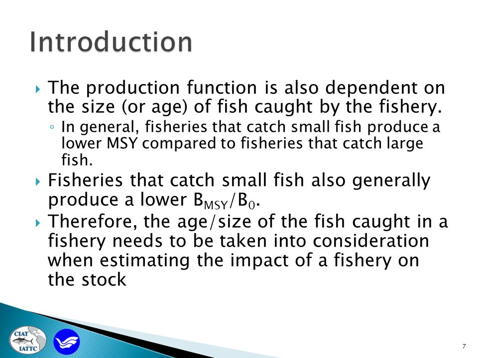  The production function is also dependent on the size (or age) of fish caught by the fishery.