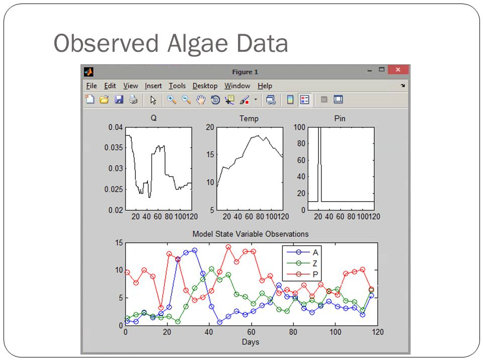Observed Algae Data