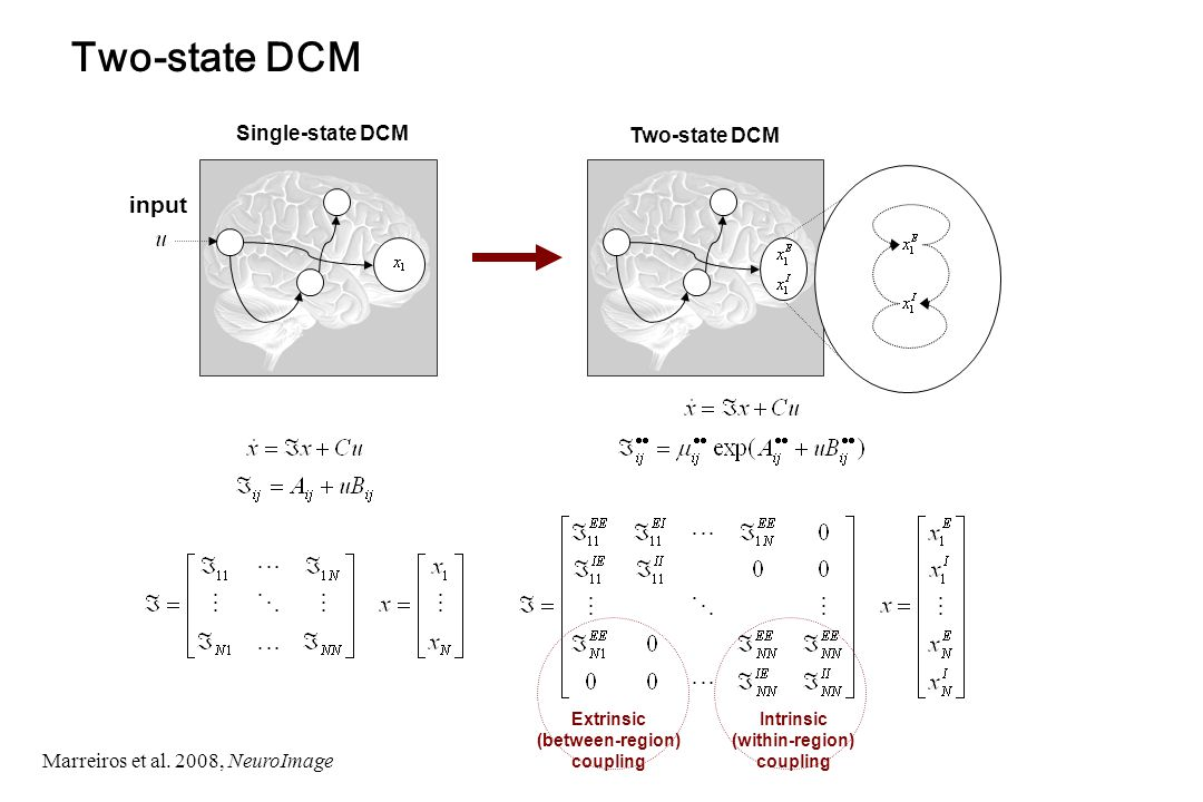 input Single-state DCM Intrinsic (within-region) coupling Extrinsic (between-region) coupling Two-state DCM Marreiros et al.