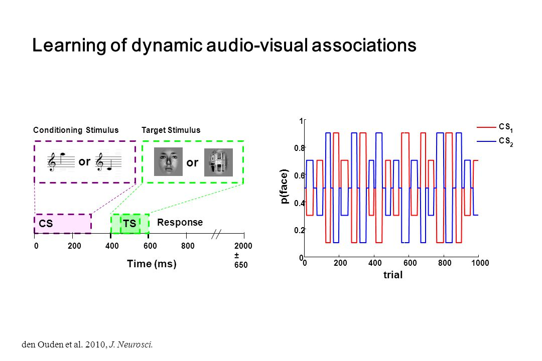 Learning of dynamic audio-visual associations CS Response Time (ms) 02004006008002000 ± 650 or Target StimulusConditioning Stimulus or TS 020040060080