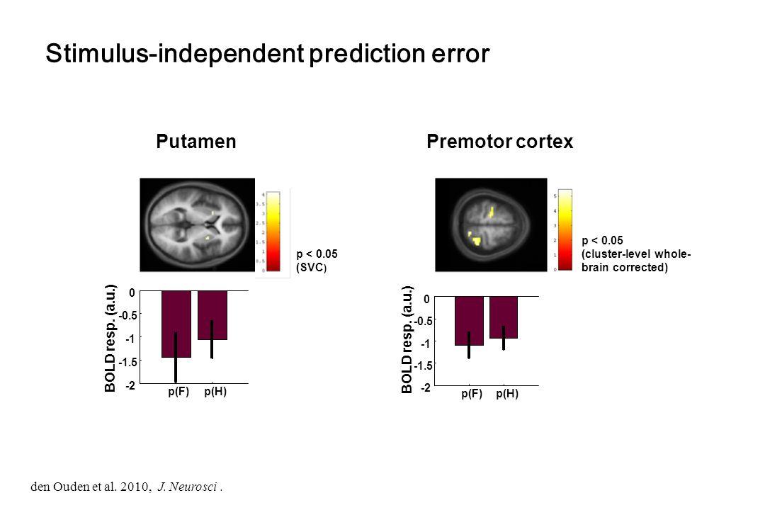 PutamenPremotor cortex Stimulus-independent prediction error p < 0.05 (SVC ) p < 0.05 (cluster-level whole- brain corrected) p(F) p(H) -2 -1.5 -0.5 0