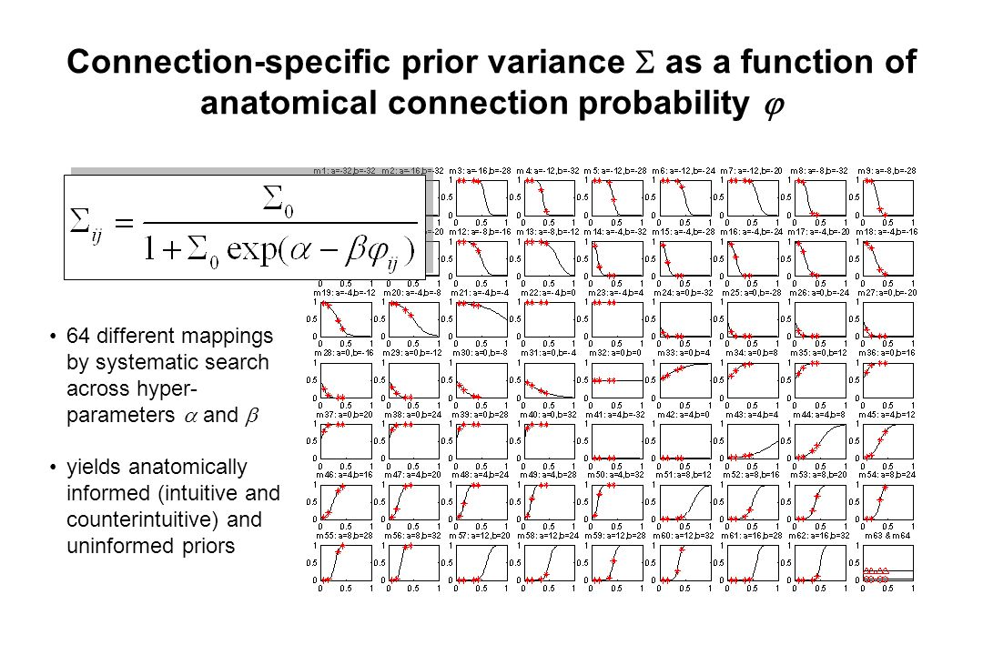 Connection-specific prior variance  as a function of anatomical connection probability  64 different mappings by systematic search across hyper- parameters  and  yields anatomically informed (intuitive and counterintuitive) and uninformed priors