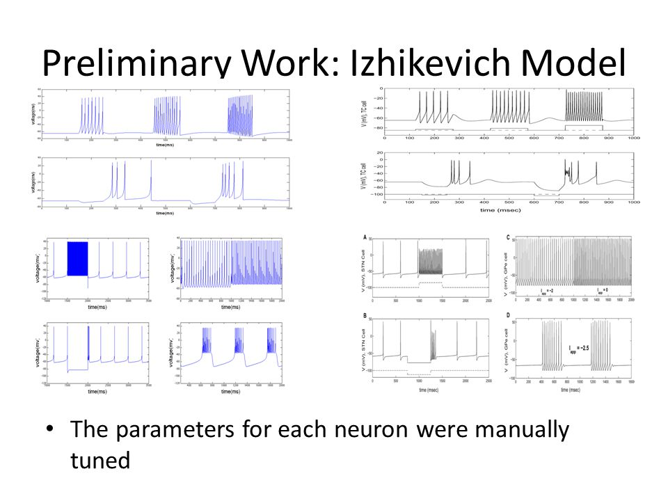 Preliminary Work: Izhikevich Model The parameters for each neuron were manually tuned