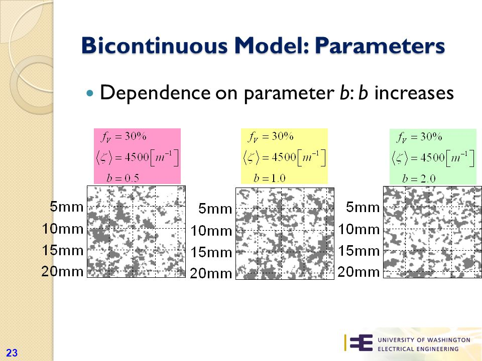 Bicontinuous Model: Parameters Dependence on parameter b: b increases 23
