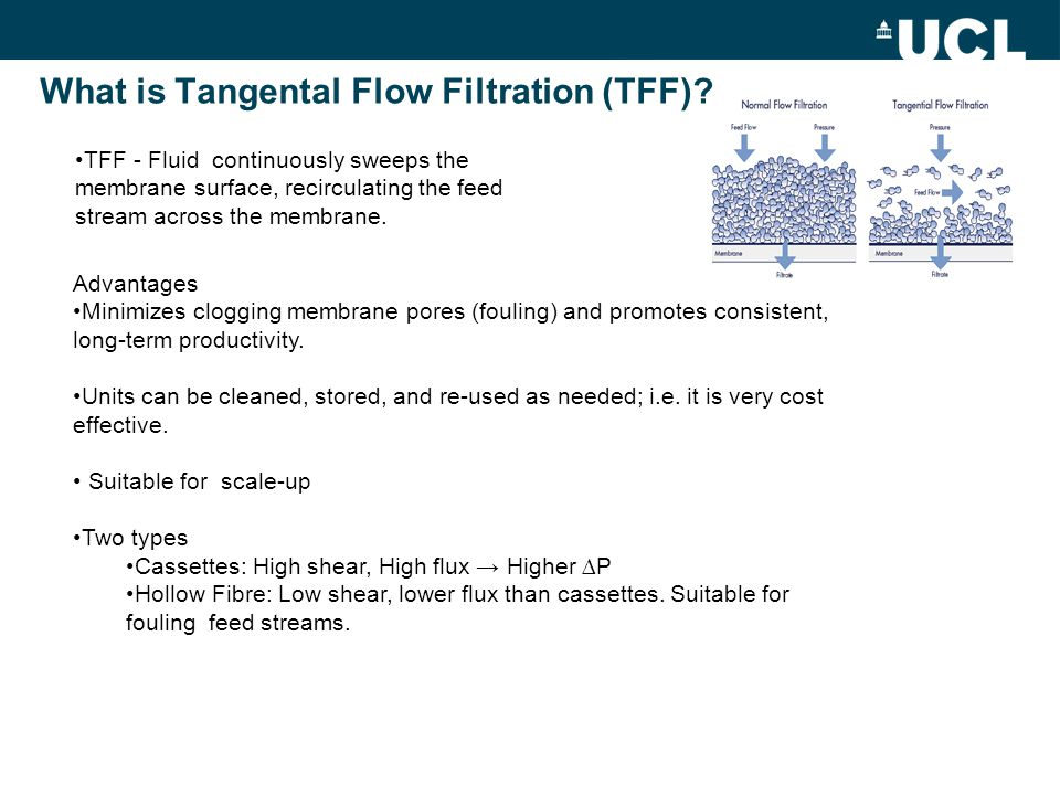 What is Tangental Flow Filtration (TFF)? TFF - Fluid continuously sweeps the membrane surface, recirculating the feed stream across the membrane. Adva