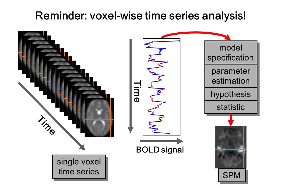 Time BOLD signal Time single voxel time series single voxel time series Reminder: voxel-wise time series analysis.