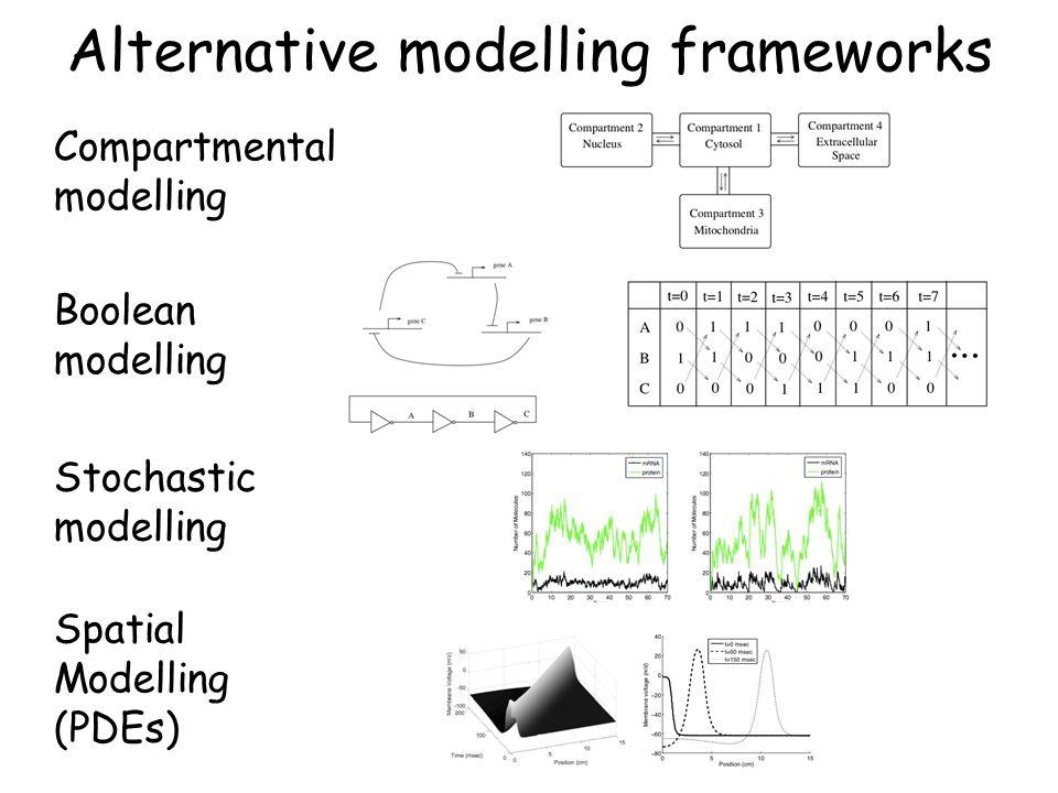 Alternative modelling frameworks Stochastic modelling Compartmental modelling Boolean modelling Spatial Modelling (PDEs)