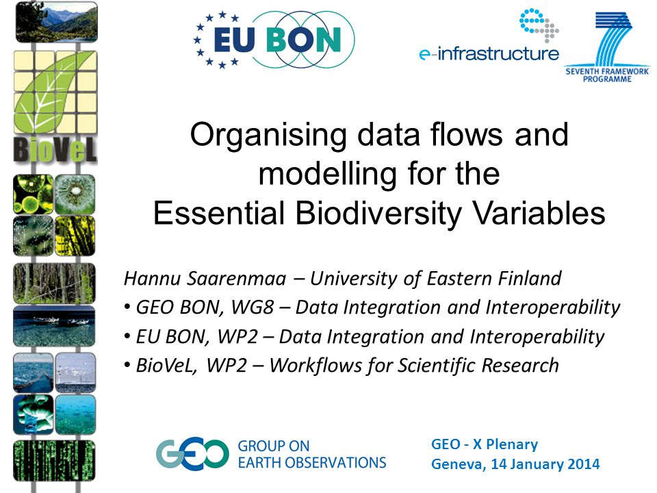 Hannu Saarenmaa – University of Eastern Finland GEO BON, WG8 – Data Integration and Interoperability EU BON, WP2 – Data Integration and Interoperability BioVeL, WP2 – Workflows for Scientific Research Organising data flows and modelling for the Essential Biodiversity Variables 1 GEO - X Plenary Geneva, 14 January 2014