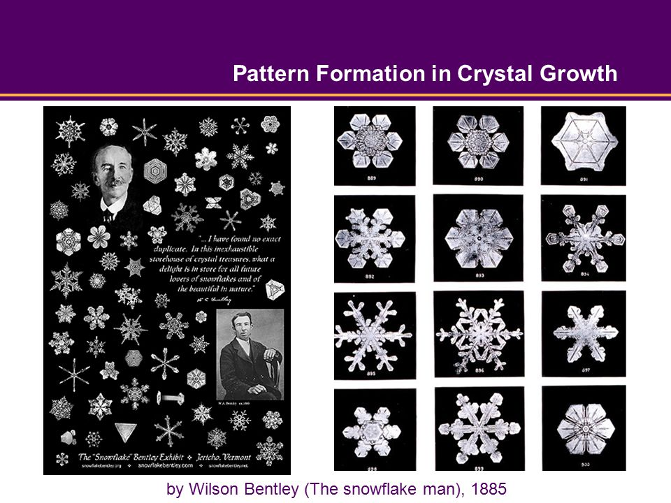 Pattern Formation in Crystal Growth by Wilson Bentley (The snowflake man), 1885