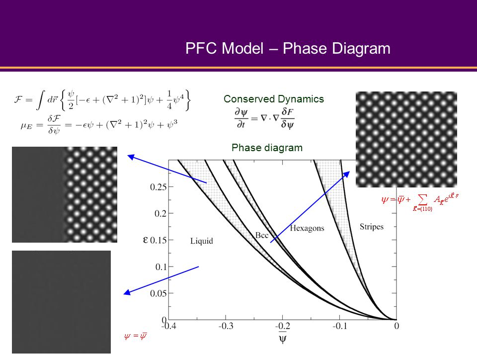 PFC Model – Phase Diagram Phase diagram Conserved Dynamics