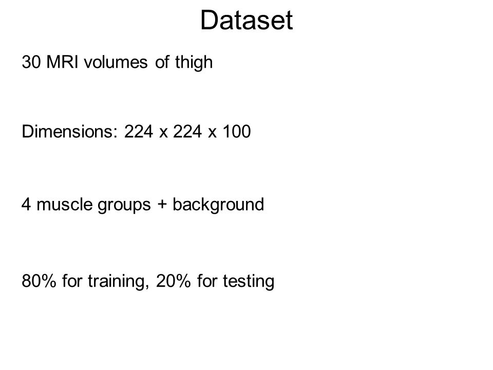 Dataset 30 MRI volumes of thigh Dimensions: 224 x 224 x 100 4 muscle groups + background 80% for training, 20% for testing