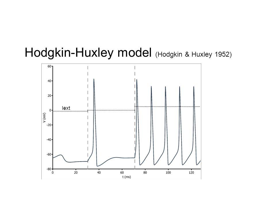 Iext Hodgkin-Huxley model (Hodgkin & Huxley 1952)