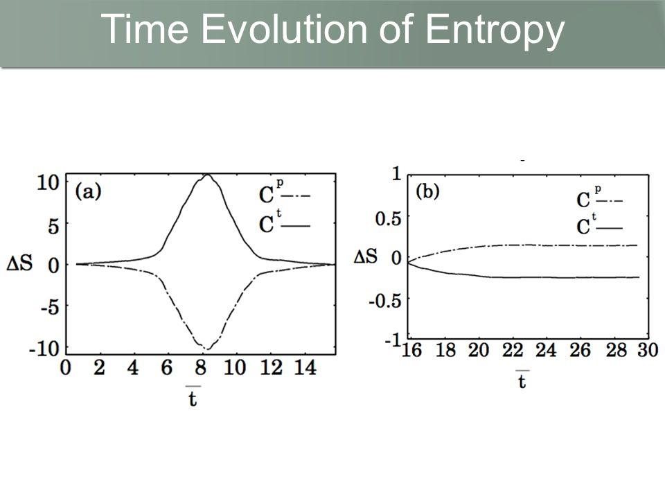 Time Evolution of Entropy