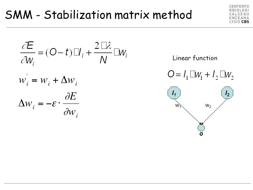 SMM - Stabilization matrix method I1I1 I2I2 w1w1 w2w2 Linear function o