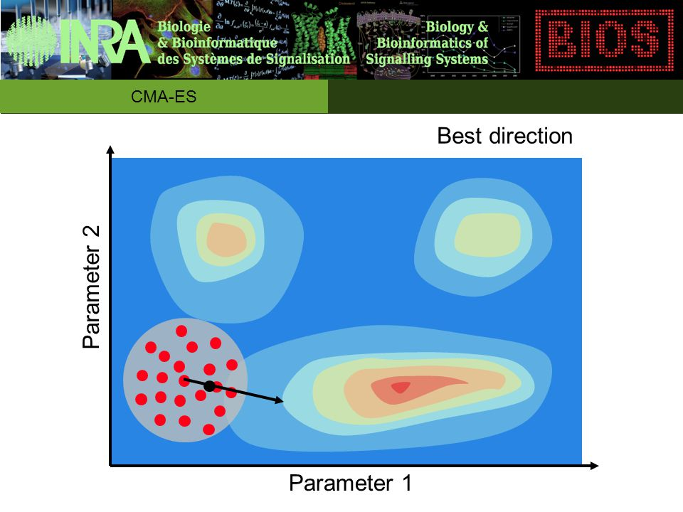 Best direction Parameter 1 Parameter 2 CMA-ES