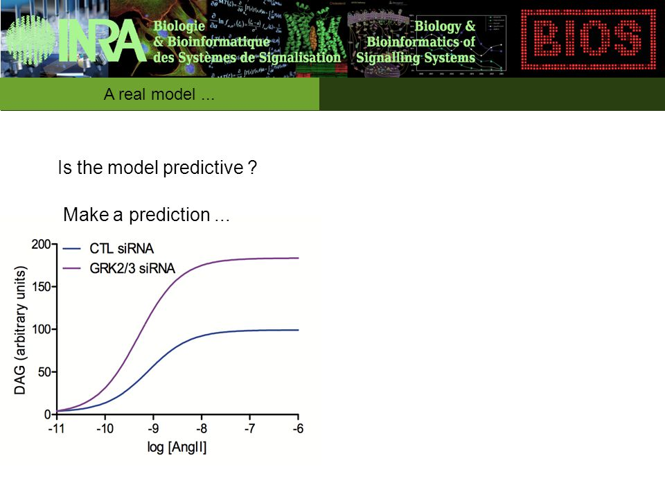 A real model... Is the model predictive Make a prediction...