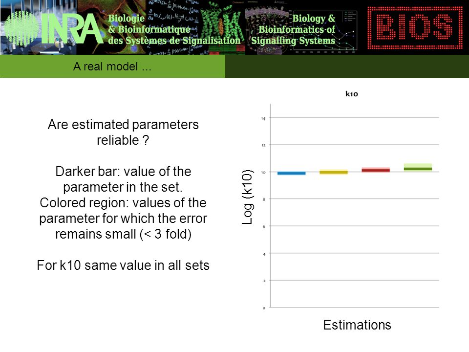 Estimations Log (k10) Are estimated parameters reliable ? Darker bar: value of the parameter in the set. Colored region: values of the parameter for w