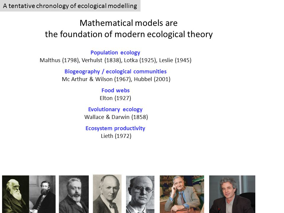 A tentative chronology of ecological modelling Mathematical models are the foundation of modern ecological theory Population ecology Malthus (1798), Verhulst (1838), Lotka (1925), Leslie (1945) Biogeography / ecological communities Mc Arthur & Wilson (1967), Hubbel (2001) Food webs Elton (1927) Evolutionary ecology Wallace & Darwin (1858) Ecosystem productivity Lieth (1972)