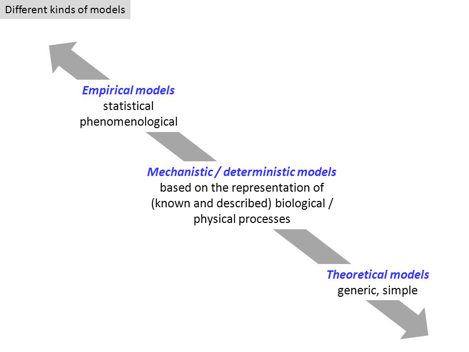 Different kinds of models Empirical models statistical phenomenological Mechanistic / deterministic models based on the representation of (known and described) biological / physical processes Theoretical models generic, simple