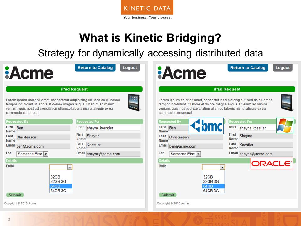 3 3 What is Kinetic Bridging Strategy for dynamically accessing distributed data