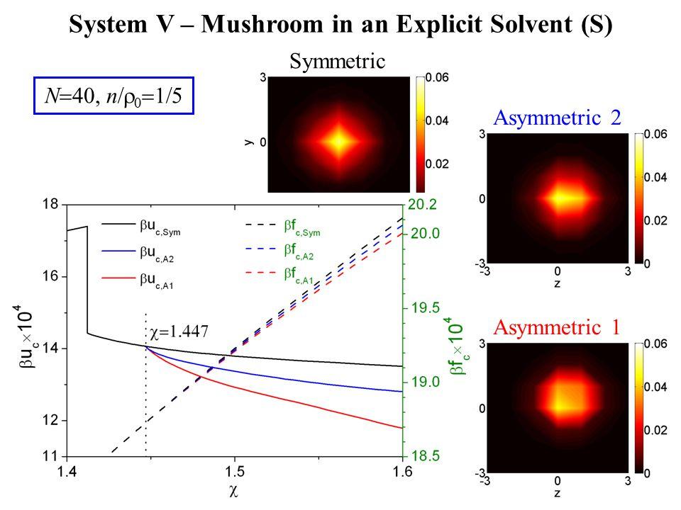 Asymmetric 1 Asymmetric 2 Symmetric N  40, n  0  1  5 System V – Mushroom in an Explicit Solvent (S)