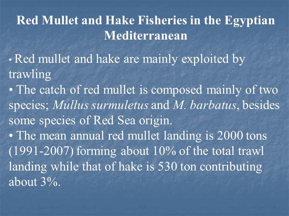 Yield per recruit M. barbatus F c = 0.85 yr -1, F max = 0.61 yr -1 ( 30% decreasing)