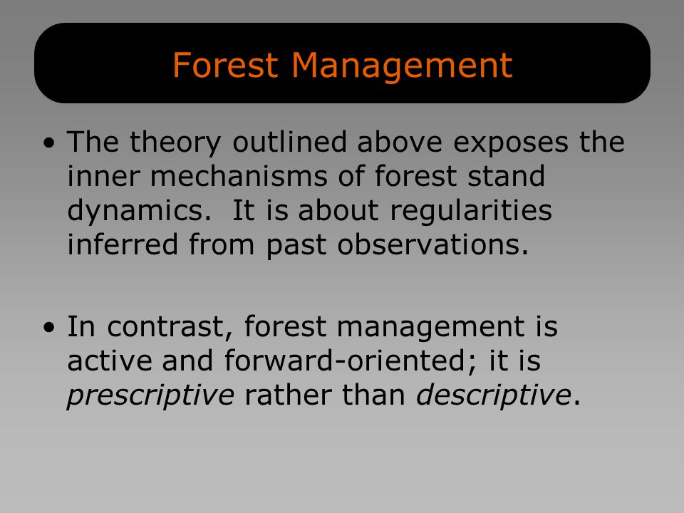 Forest Management The theory outlined above exposes the inner mechanisms of forest stand dynamics.