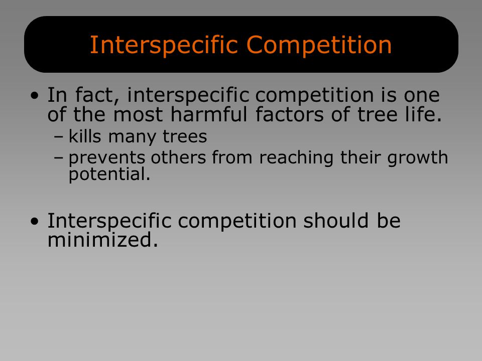 Interspecific Competition In fact, interspecific competition is one of the most harmful factors of tree life.