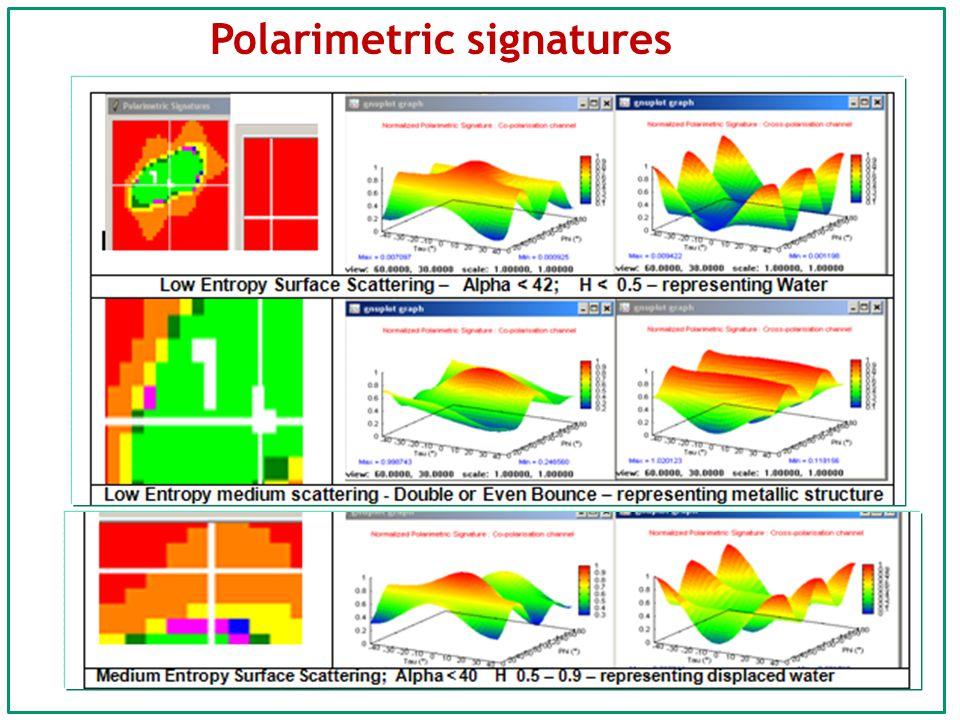 Polarimetric signatures