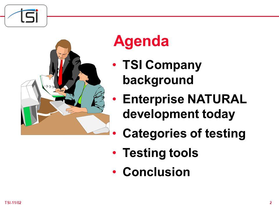 13TSI-11/02 NATURAL Testing Toolkit