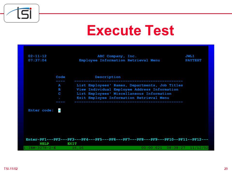 29TSI-11/02 Execute Test