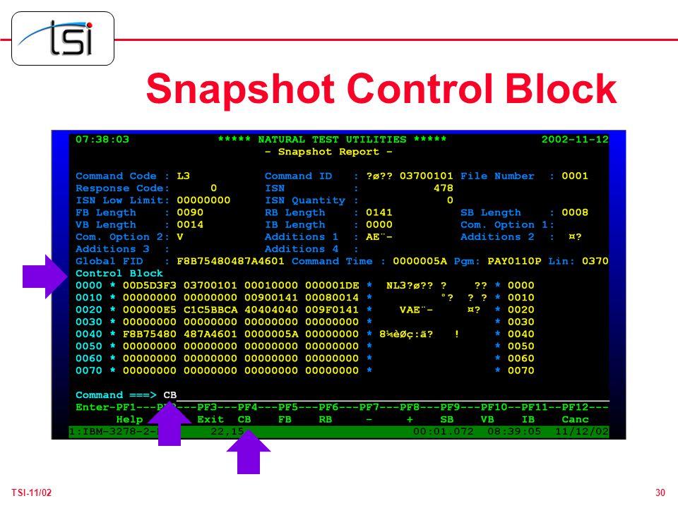 30TSI-11/02 Snapshot Control Block