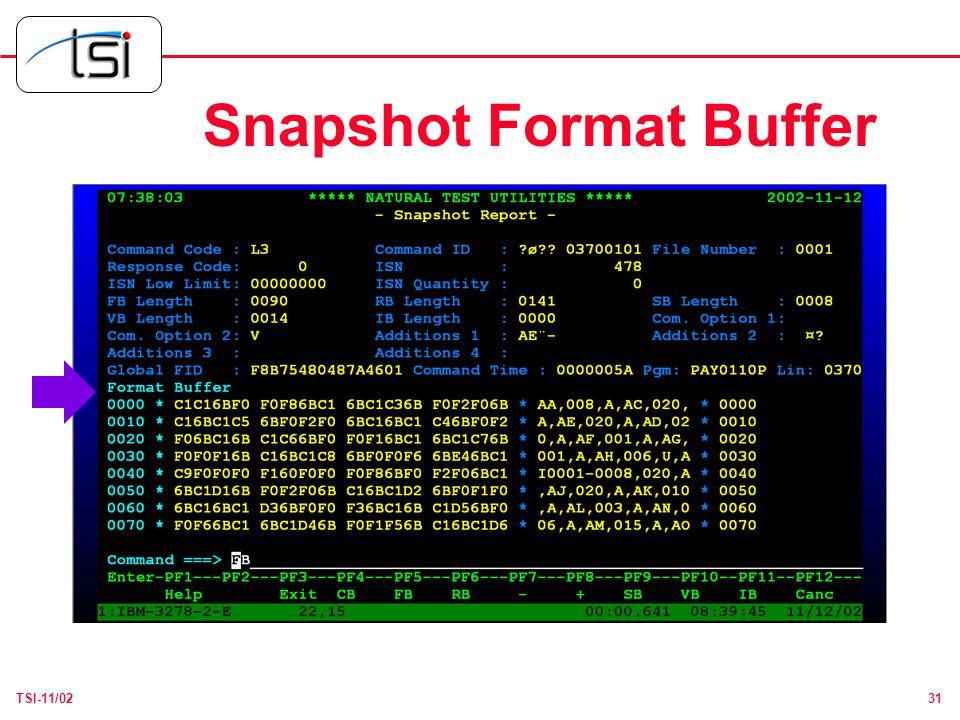 31TSI-11/02 Snapshot Format Buffer