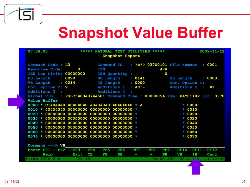 34TSI-11/02 Snapshot Value Buffer