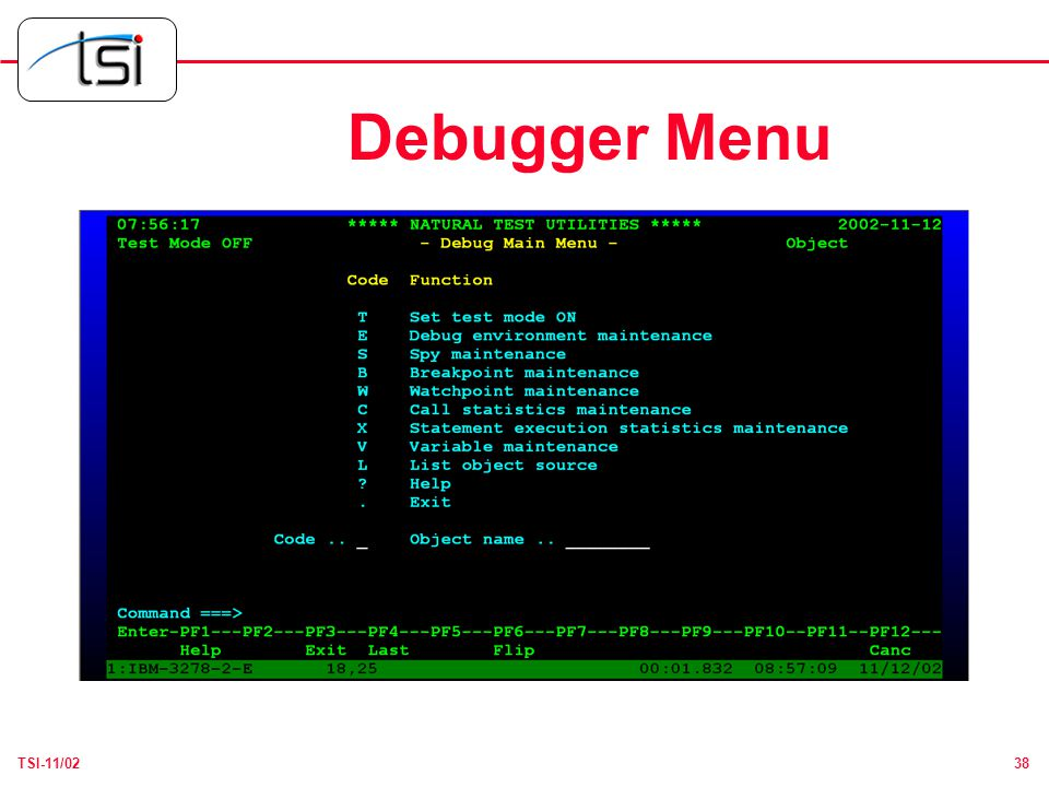 38TSI-11/02 Debugger Menu