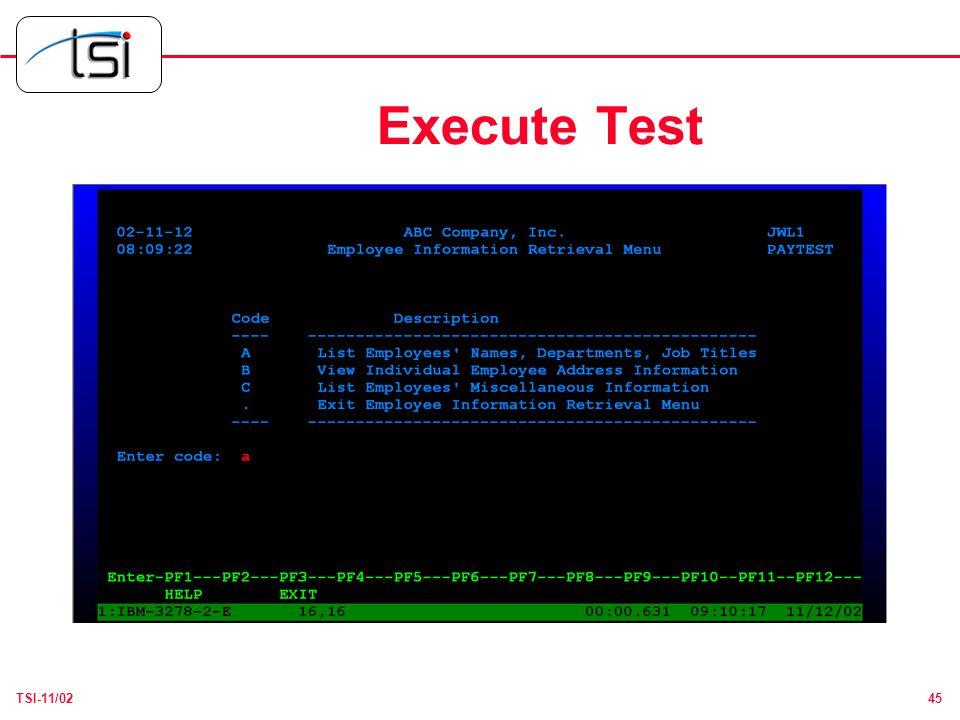 45TSI-11/02 Execute Test