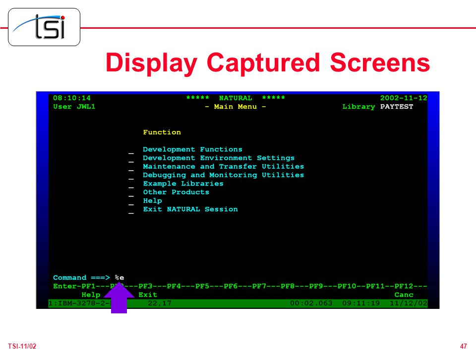 47TSI-11/02 Display Captured Screens