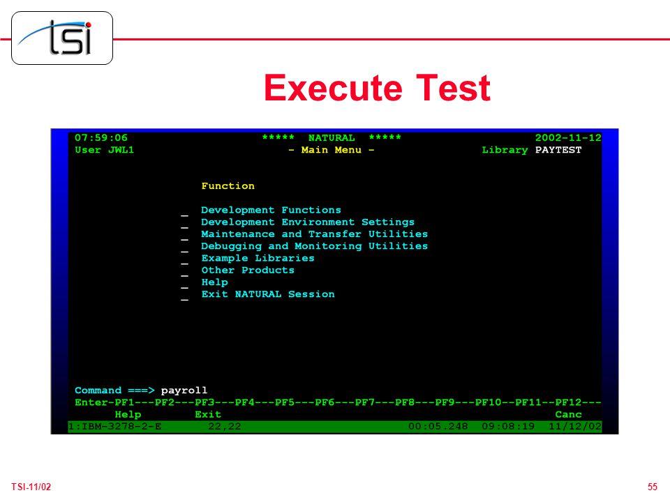 55TSI-11/02 Execute Test