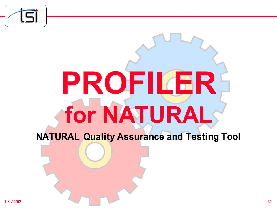 61TSI-11/02 PROFILER for NATURAL NATURAL Quality Assurance and Testing Tool