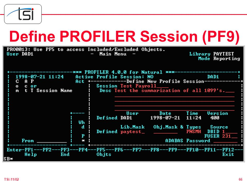66TSI-11/02 Define PROFILER Session (PF9)